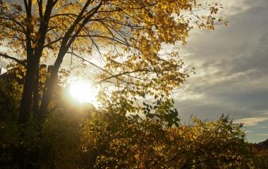 podzimn v Oslu